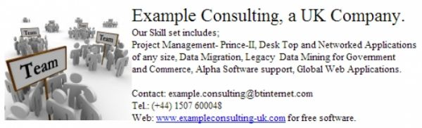 Example Consulting